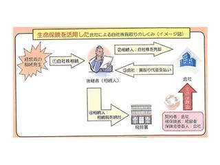 画像(自社株 2).jpg